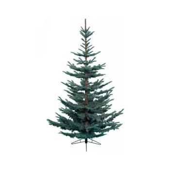 Albero di Natale Abete Nobilis 210 cm Blu